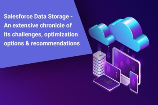 Salesforce Data Storage
