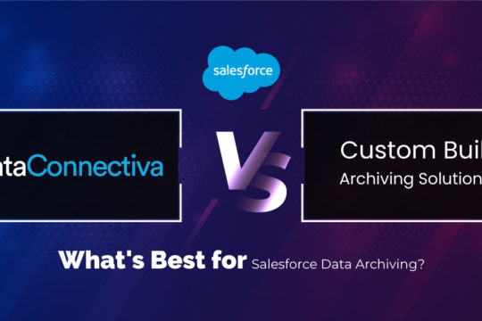DataConnectiva vs custom build archiving solution