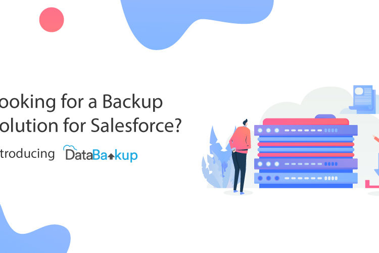 Looking for a Backup Solution for Salesforce? Introducing DataBakup